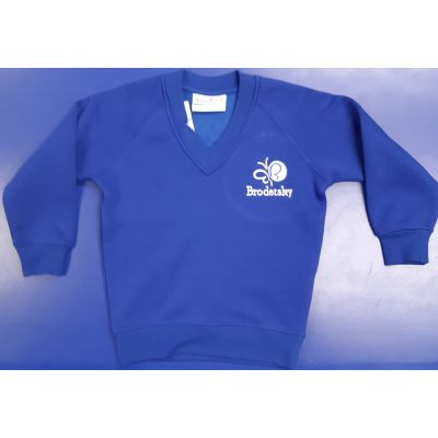 Brodetsky Royal Blue V-Neck Sweatshirt w/Logo