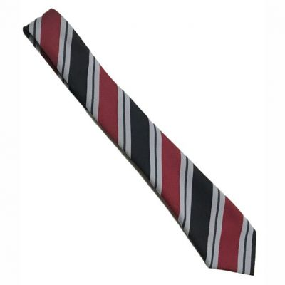 Lawnswood Purple 52″ Stripe Tie (Year 9)
